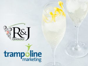 The symbiosis of wine and marketing sciences between Trampoline MArketing and R&J Oenology