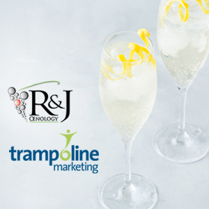 PArtnership between Trampoline Marketing and R&J Oenology